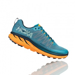 Mens Shoes - Trail